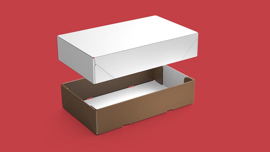 DLS box
