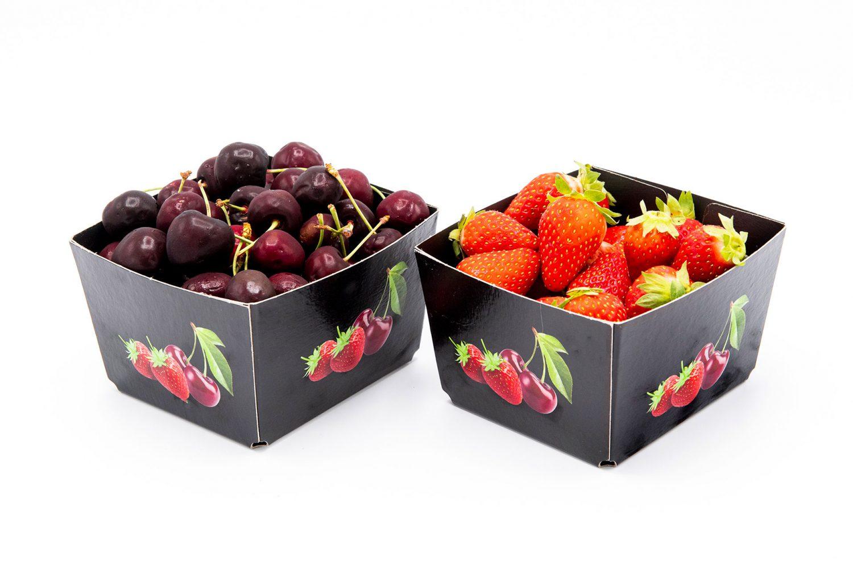 Solidus-Solutions-Pappschale-Obst-Erdbeeren-Kirschen